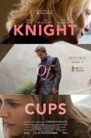 Knight of Cups streaming vf