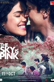 The Sky Is Pink streaming vf