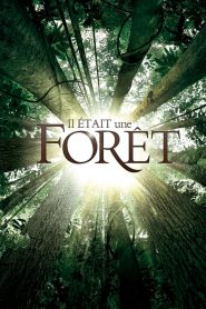 Il était une forêt streaming vf