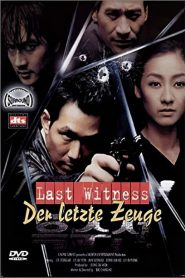 The Last Witness streaming vf
