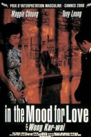 In the Mood for Love streaming vf