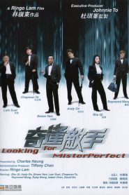 Looking for mister perfect streaming vf