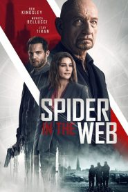 Spider in the Web streaming vf